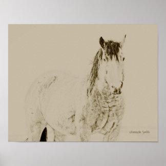 impresión occidental del caballo del arte, retra, póster