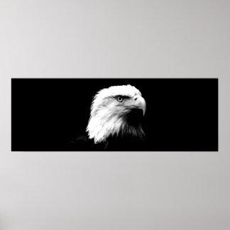 Impresión panorámica del poster de Eagle calvo Ame