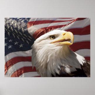 Impresión patriótica de la lona de Eagle Póster