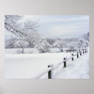 Impresión pegajosa del ~ de la nieve 7 impresiones