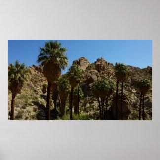 Impresión perdida del oasis de las palmas póster