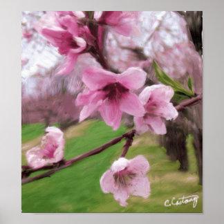 Impresión poster de los flores del melocotón