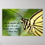 Impresión principal del poster de la mariposa