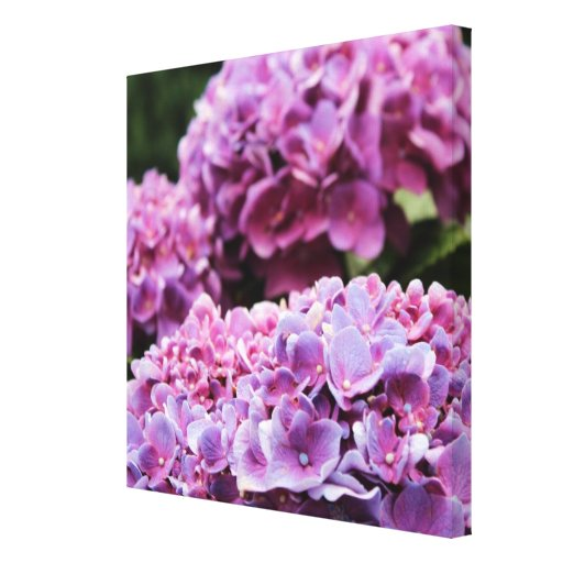 Impresión púrpura de la lona de la sinfonía impresión en lona estirada