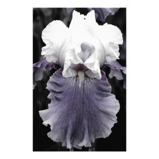 Impresión púrpura descolorada hermosa del iris  papeleria