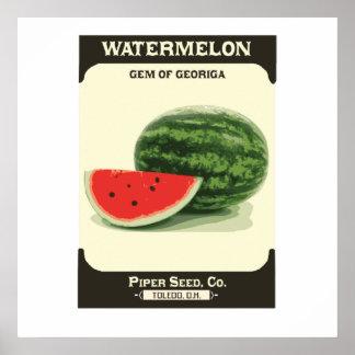 Impresión retra del poster del melón del paquete d