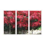 Impresión roja de la lona de los árboles del otoño lona envuelta para galerias