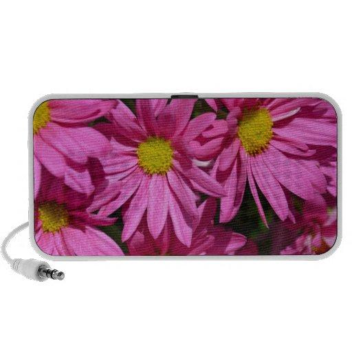 Impresión rosada bonita de las flores del crisante PC altavoces