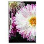 Impresión rosada imponente de la dalia tablero blanco