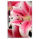Impresión rosada imponente del lirio tablero blanco