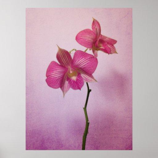 Impresión rosada rosada del poster de los flores d