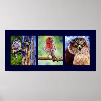Impresión salvaje de la acuarela de los pájaros poster