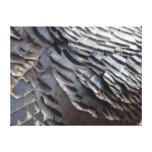 Impresión salvaje de la lona de las plumas de Turq Lona Envuelta Para Galerías