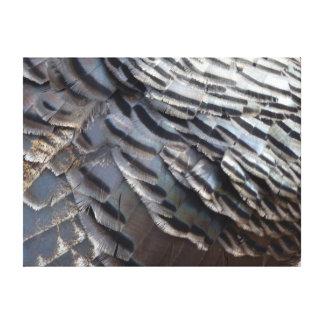Impresión salvaje de la lona de las plumas de Turq Lona Estirada Galerias