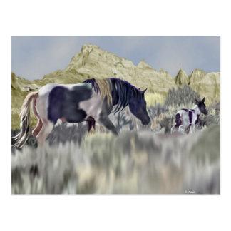 Impresión salvaje del arte de la yegua y del potro postal