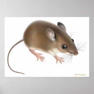 Impresión salvaje del ratón de ciervos póster