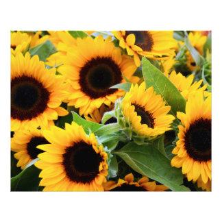 Impresión soleada de la foto de las flores fotografía