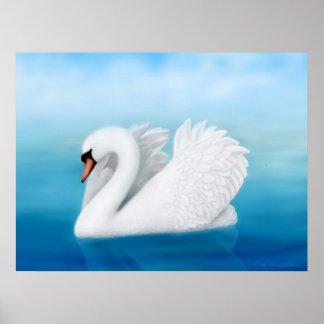 Impresión solitaria del cisne mudo