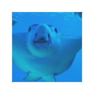 Impresión subacuática de la lona de la pastinaca impresion en lona