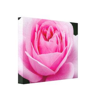 Impresión subió de la lona del rosa en colores pas impresión de lienzo