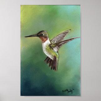 Impresión Throated de rubíes del arte del pájaro d Impresiones