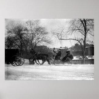 Impresión traída por caballo del trineo NYC Impresiones