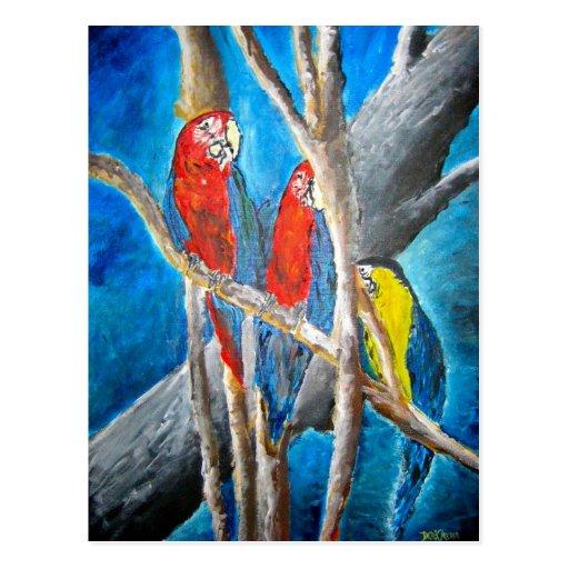 impresión tropical del arte de la pintura al óleo  tarjetas postales