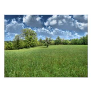 Impresión verde apalache de la foto fotografías