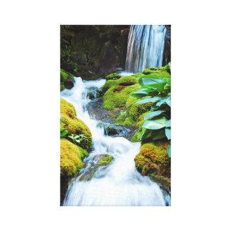 Impresión verde de la lona de la cascada del jardí lona envuelta para galerias