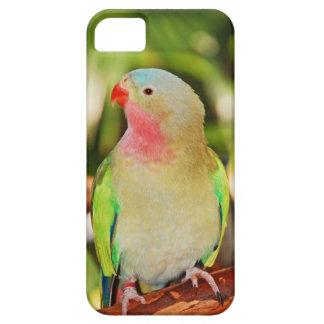 Impresión verde del parakeet de la princesa iPhone 5 carcasa