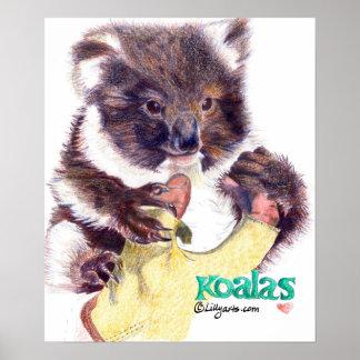 Impresión y poster de la bella arte del oso de koa