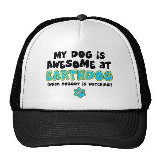 Impresionante en Earthdog Gorros
