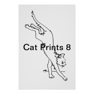 Impresiones 8 del gato