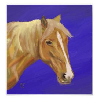 Impresiones de la foto del caballo del Palomino Cojinete