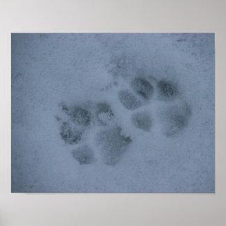 Impresiones de la pata del perrito en nieve