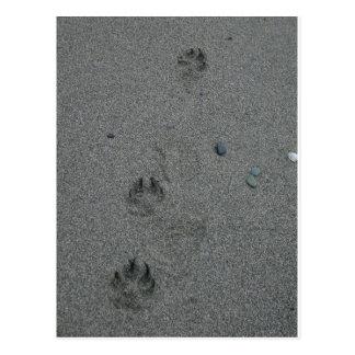 Impresiones de la pata en la arena tarjeta postal