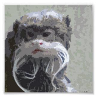 Impresiones de MonkieLand del Tamarin del emperado Cojinete