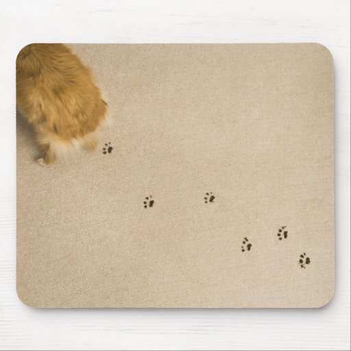Impresiones del perro en la alfombra tapetes de raton