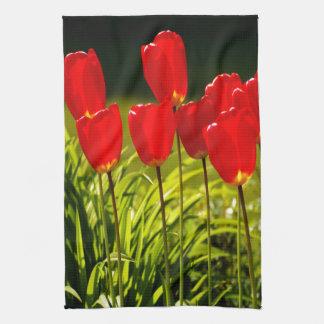 impresiones del tulipán (cuadrado) toallas