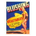 Impresiones del vintage de anuncios tarjetas postales