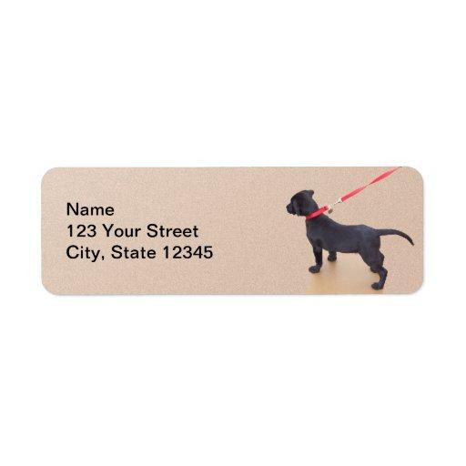 Impresiones negras del perrito en el remite de la etiqueta de remite