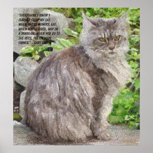 Impresiones y posters del gato de Coon de Maine
