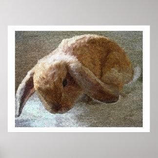 Impresiones y posters espigados del conejo de Hola