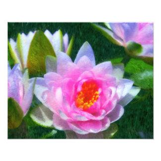 Impressionistic Waterlily Photo Print