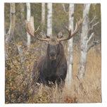 Impressive Bull Moose Napkins