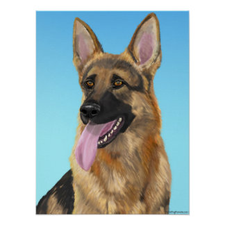 Impressive German Shepherd with his Tongue Out Poster