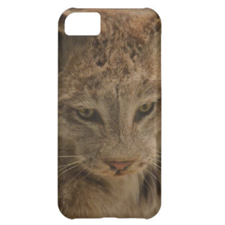Impressive Lynx iPhone 5C Case
