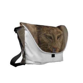 Impressive Lynx Messenger Bag