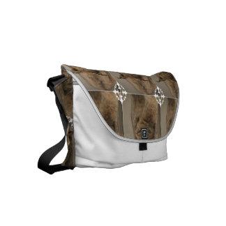 Impressive Lynx Small Messenger Bag