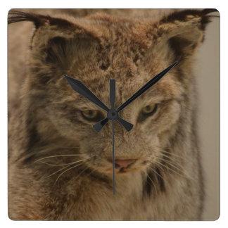 Impressive Lynx Square Wall Clock